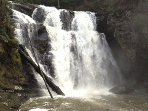 Waterfall Victoria. from recent trip. Amazing enefgy